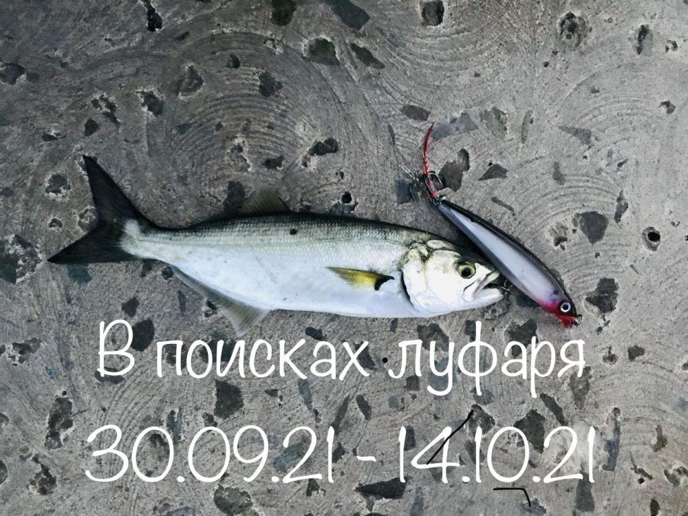 9B92DB6C-3C2D-46F7-BA8E-7AF8AF2908EC.jpeg